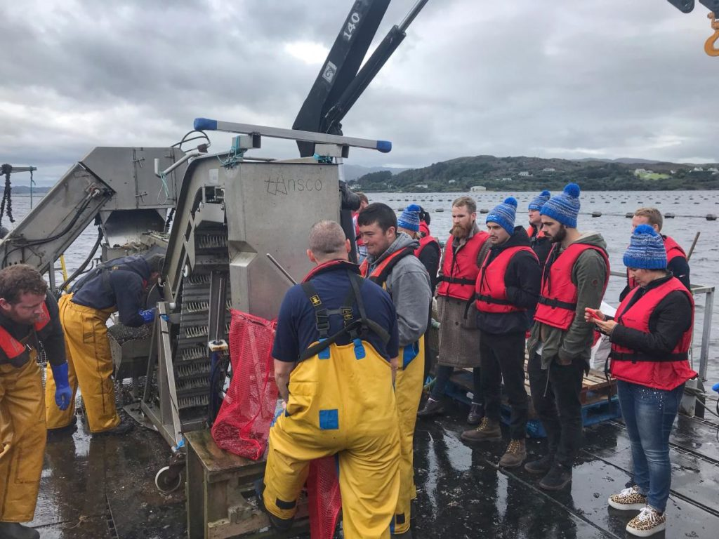 Mulroy Bay Mussels-Donegal Food TOurs